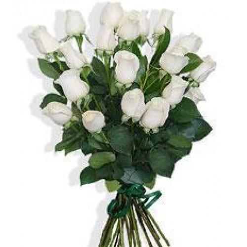 Ramo de 12 rosas blancas – Floristería de la Fuente